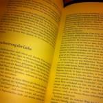 Wollust des Untergangs - Buch im Buch