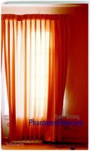 Bjarte Breiteig: Phantomschmerzen