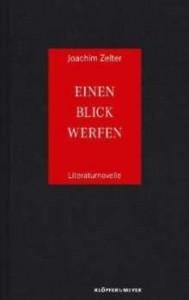 Joachim Zelter: Einen Blick werfen