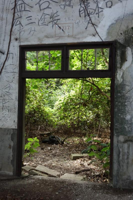 Fenster zur Wildnis © Leopold Federmair