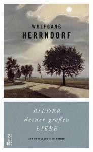 Wolfgang Herrndorf: Bilder deiner großen Liebe