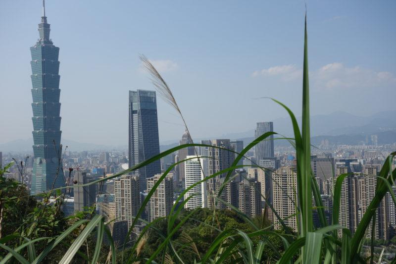 Das bambusförmige Holzhaus (101)