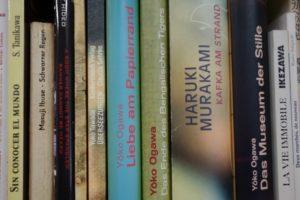 Japanische Zeile in meiner provisorischen Bibliothek © Leopold Federmair